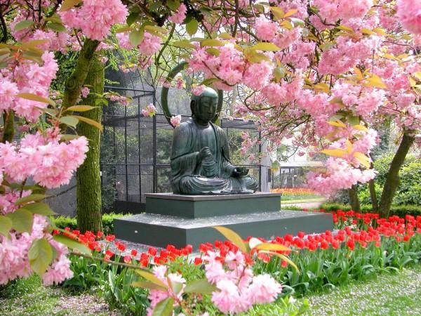 Статуя Будды Амстердамского зоопарка Artis