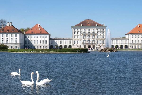 Лебеди в пруду комплекса Нимфенбург